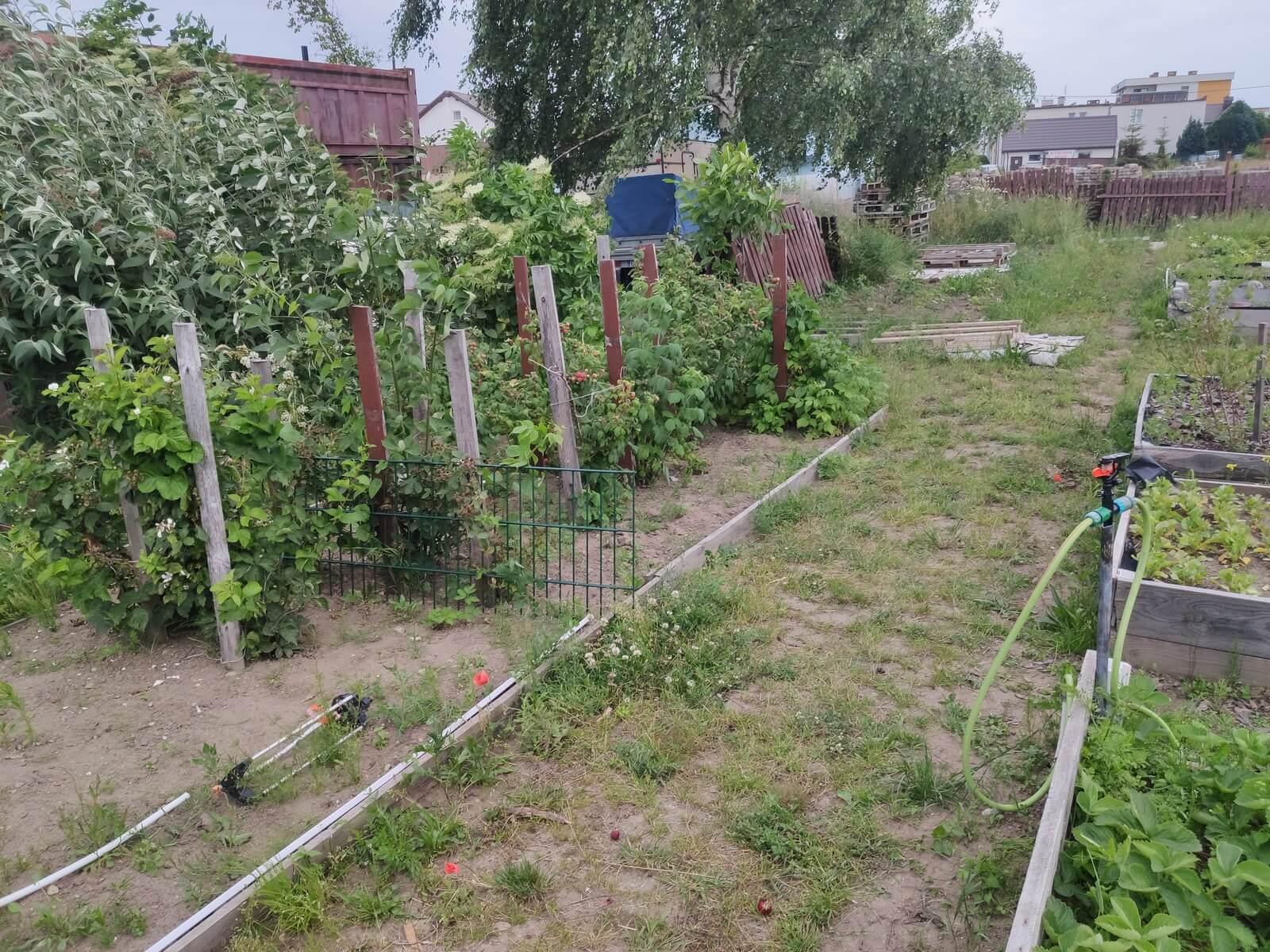 Posiłki - ogród