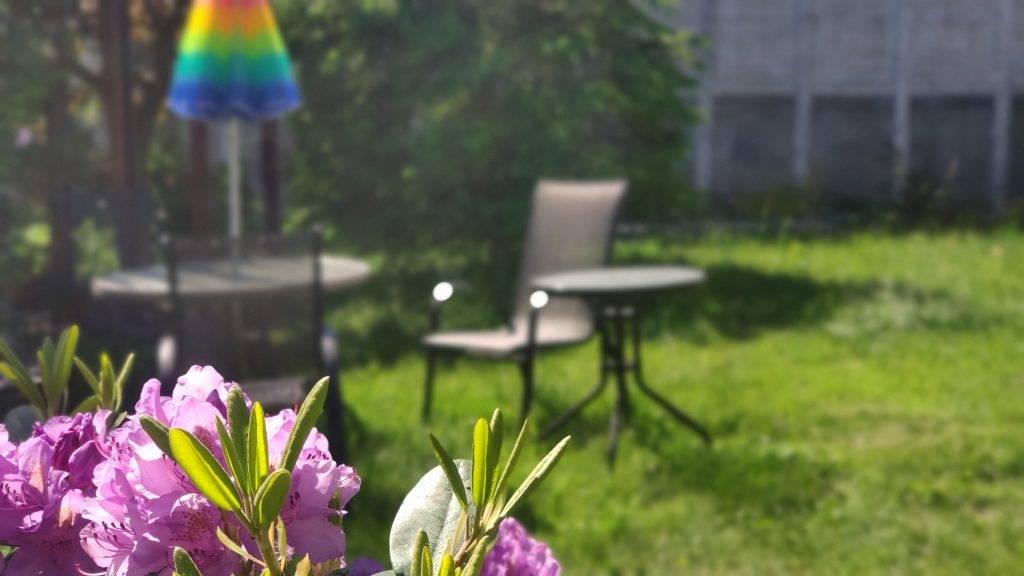 stolik w ogrodzie